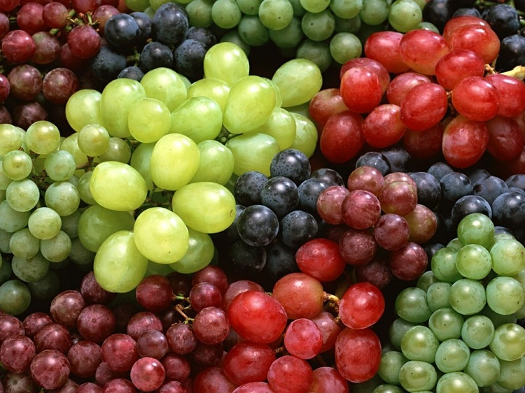 Grapes guard the body from radiation