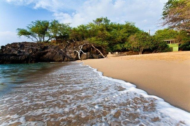 Kohala Coast's white sand beach