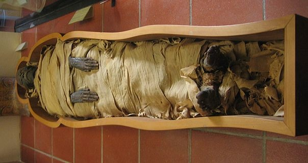 Cocaine and Tobacco Mummy Residue