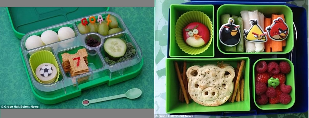 Former accountant makes amazing lunches for her son