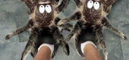 The Most Unusual Flip Flops and Slippers