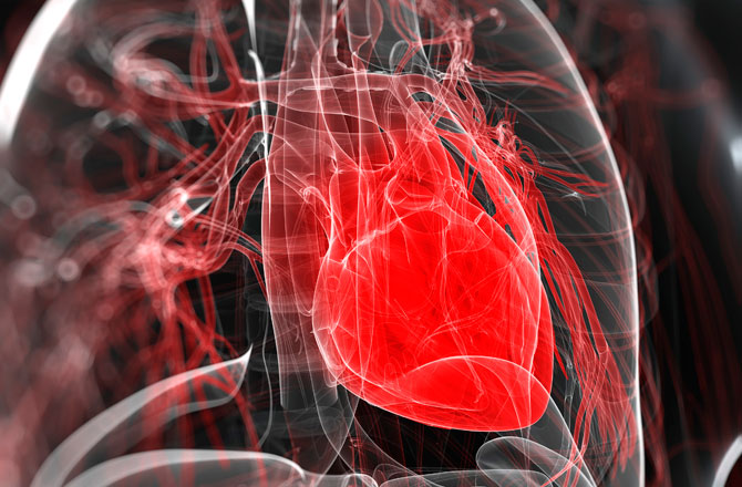 Does heart can beat after the human dies