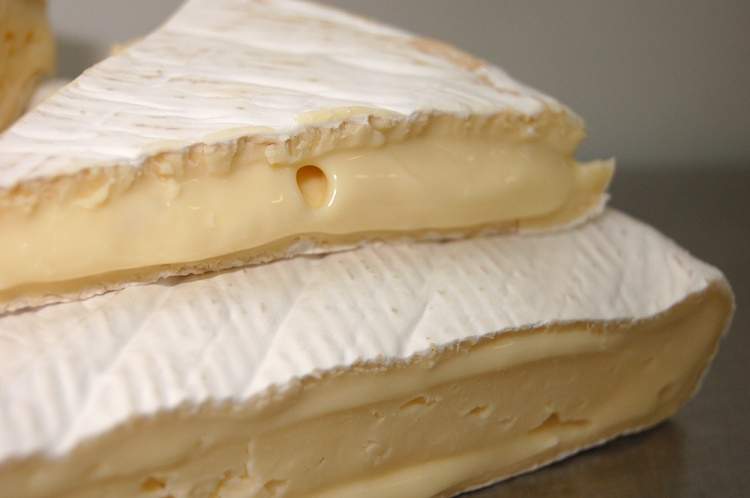 Soft Mould Cheese