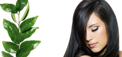 Curry leaves magic for your radiant hair! Astonishing results!
