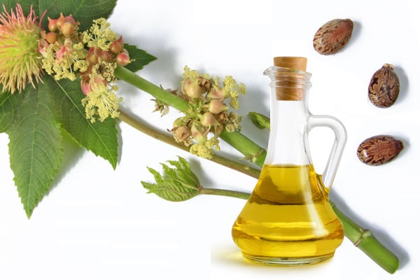 Uses of castor oil and its benefits