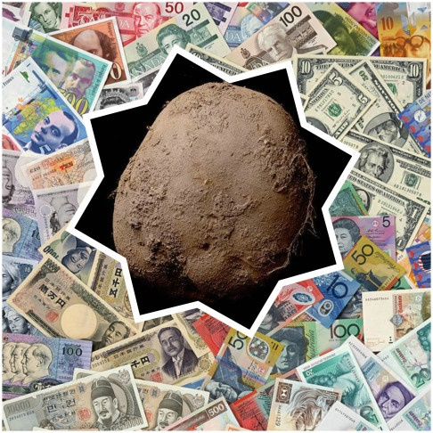 Potato Photograph Now Made World Famous, Catches Fancy Of Private Client