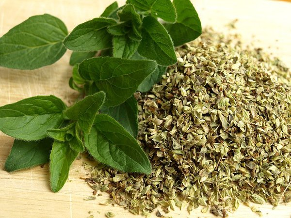 Use the well known Oregano