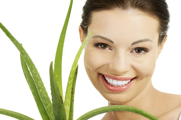herbal products have regained their importance