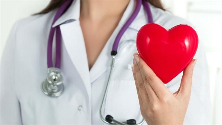 Cardiac Stem Cell Research Paves the Way for Exciting New Discoveries