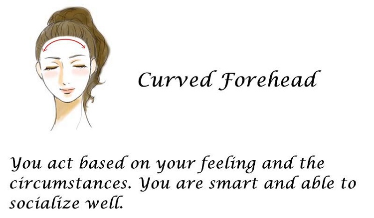Curved Forehead