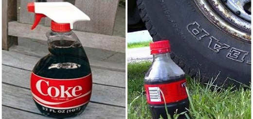 Surprising uses of Coca Cola besides being a fizzy drink