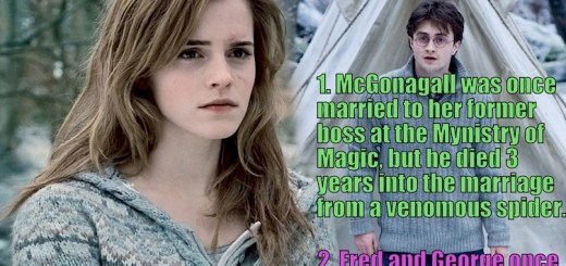 11 Of the nerdiest Harry Potter facts we bet you didn't know