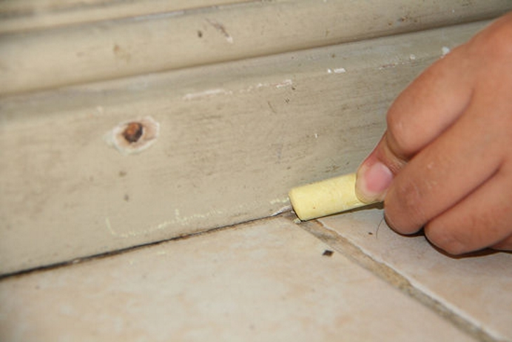 Use Calcium carbonate in chalk to get rid of ants