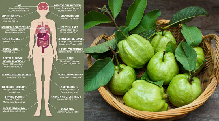The Benefits of Eating Guava