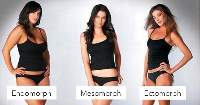 different body shapes
