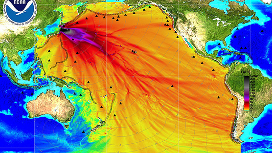 radioactive waste is being dumped in the Pacific