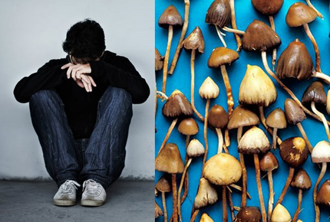 Magic mushrooms can cure depression