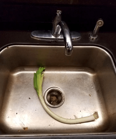 picture of a sink
