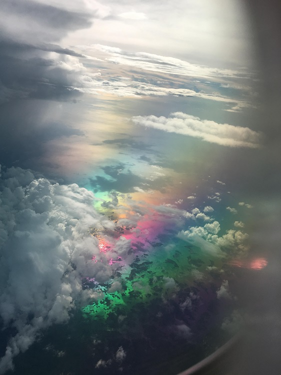 Picture taken from a flight