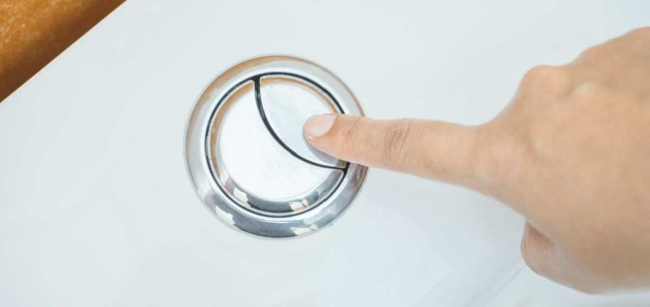 This Is the Reason Why a Toilet Flush Has One Large and One Small Button