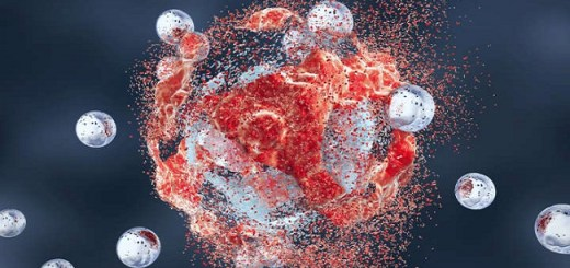 Scientists Discover Cancer Kill Switch Embedded In The Body That Can Brutally Eradicate Any Cancer Cell
