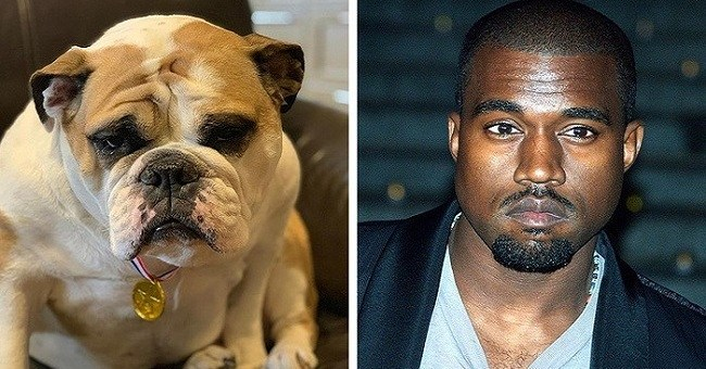 16 Animals Who Look Just Like These Celebrities, It's Hilarious