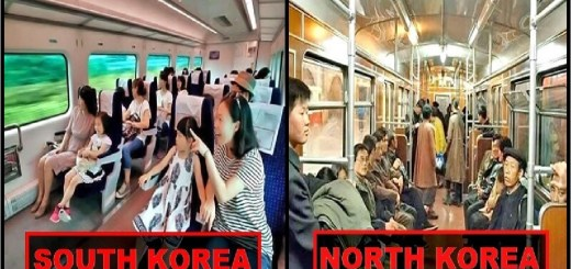 15 Pictures Point Out Major Difference Between North and South Korea
