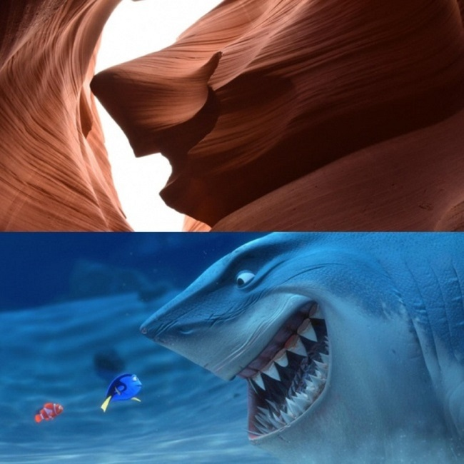 The shark from Nemo