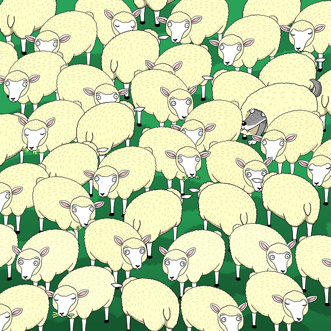 Find the wolf among the sheep