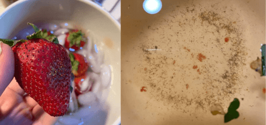 You May Never Eat Strawberries Again After Watching Videos Which Showed Worms Crawling Out Of Strawberries