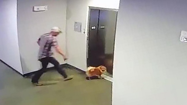 Man rescued a dog whose leash was caught in an elevator