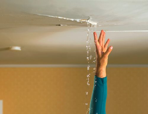 Fix any leaks in your house