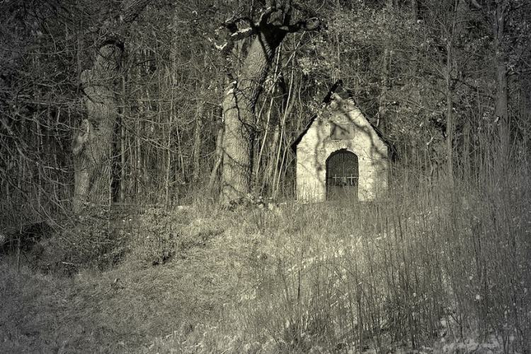 black and white image of Bell Witch property