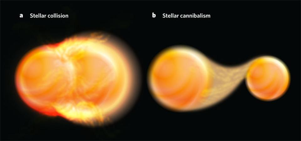 Is it Possible for Failed Stars to Make Something of Themselves?