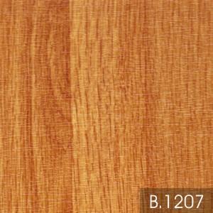 Borneo 1207