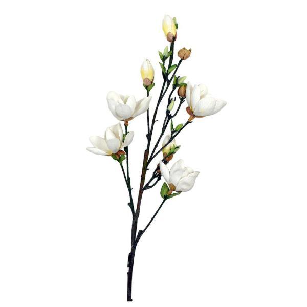 Konstväxt Blomma Vit