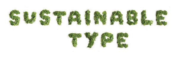vladimir koncar-sustainable typography