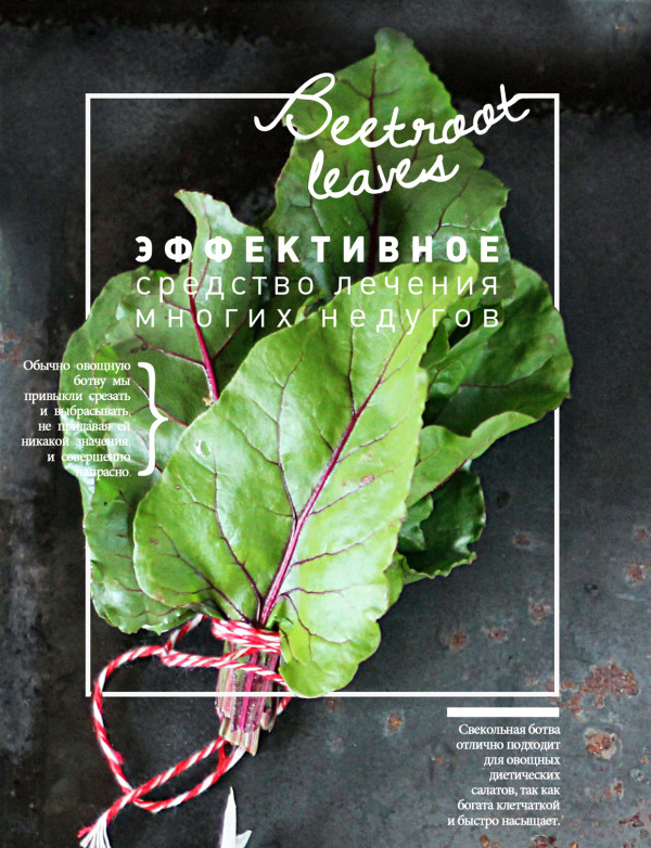 Kristina-Razueva-Food-Posters-Beetroot-Leaves