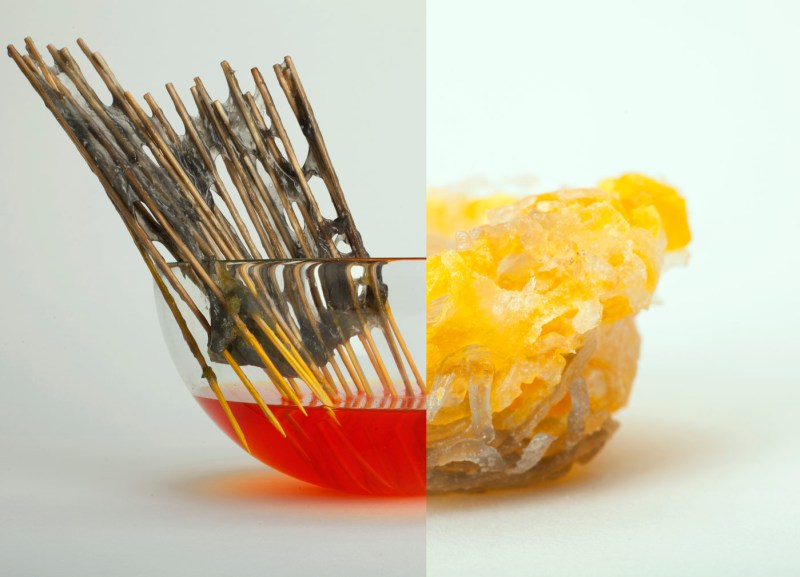 Zetteler_Matter_Taste_Miriam-Ribul_Recipes-for-Material-Activism_Photography-by-Lydia-Whitmore_2