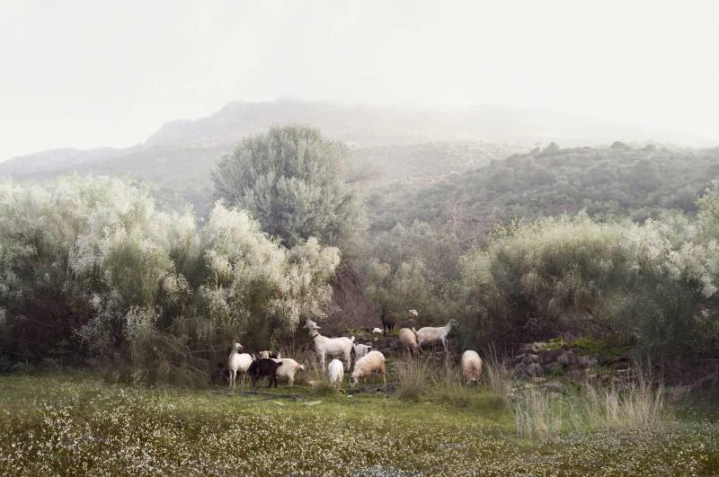 Petros-Koublis-Ephemeral-Landscapes-06