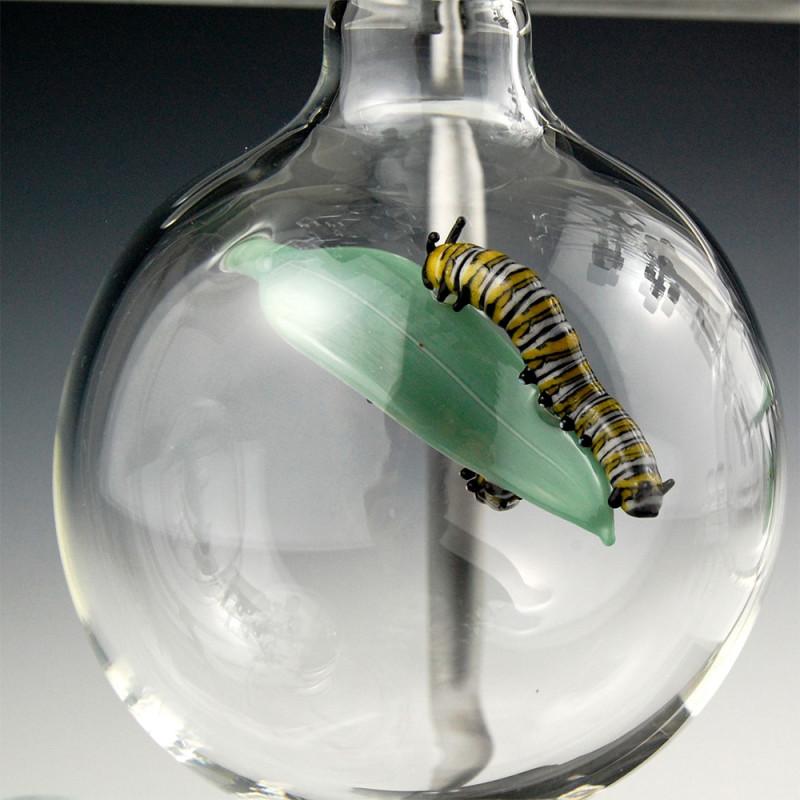 kiva-ford-glass-vessel-aquariums-05