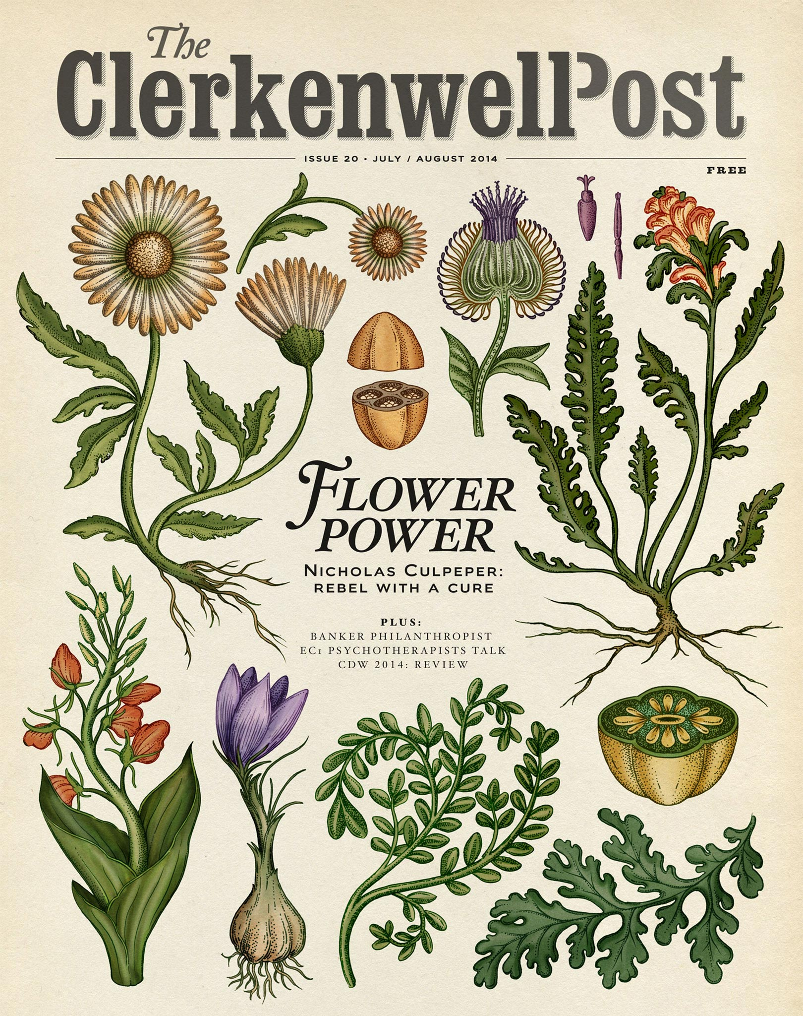 the-botanical-drawings-of-katie-scott-10