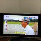 【2chまとめ】撮り鉄が写真撮影田んぼに無断で水を張り農家を困らせてた!!
