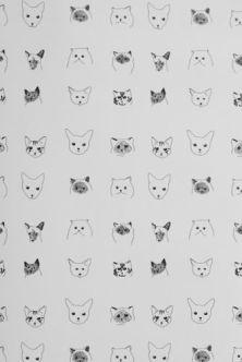 cats-wallpaper-18691-p[ekm]335x502[ekm]