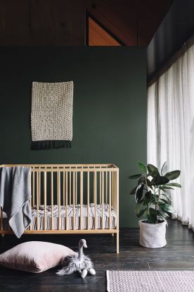 92816c46df8a4d4e22a9206276eb5b60--nursery-dark-walls-dark-green-nursery