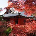 京都の古刹で閑やかな紅葉狩り毘沙門堂