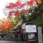 2018紅葉・八坂神社~長楽寺へ