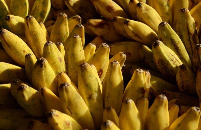 Bananas Effect Diabetes