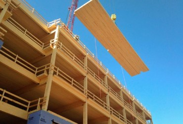 Timber in Building