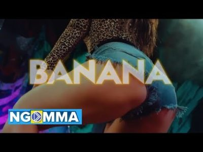 Stream WILLY PAUL BANANA Music Video Mp4 Download Song Mp3